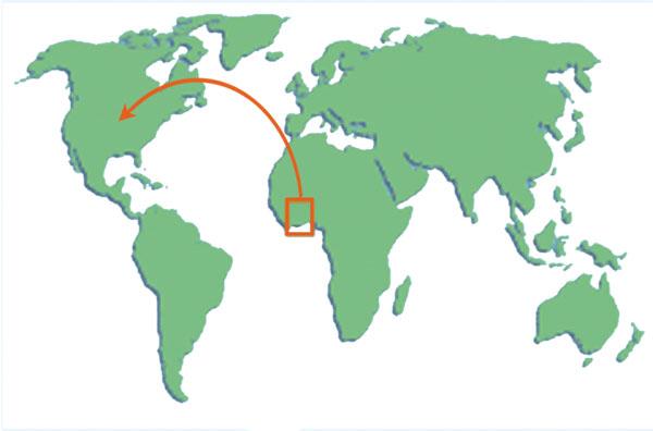 AGOA world Map